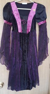 Witch Costume in Bolingbrook, Illinois