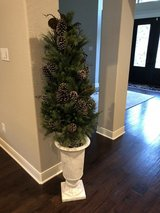 Tree in white urn in The Woodlands, Texas