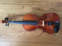 15 1/2 inch Viola in St. Charles, Illinois