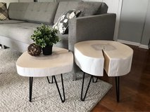 Tree slice coffee table or end tables in St. Charles, Illinois