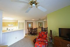 YOUR BIG PET IS WELCOME HERE!!! 2BR 2BA in MacDill AFB, FL
