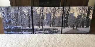 NYC Central Park in Winter on 3 Canvases in Quantico, Virginia