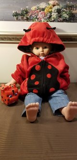 Lady bug Sweater in Westmont, Illinois