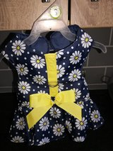 Small doggie dress harness in Lakenheath, UK