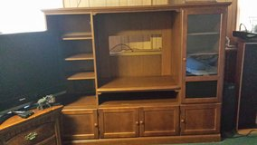 Free entertainment center in Glendale Heights, Illinois