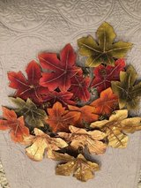 Fall Leaves in Clarksville, Tennessee