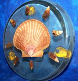 KITCHEN TRIVET... Vintage 1970s Acrylic with Real Seashells in Alamogordo, New Mexico