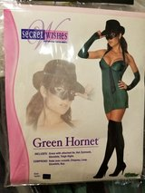 Sexy Ladies Green Hornet Costume in Elgin, Illinois