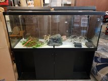 110 Gallon Auquarium with stand, lights, heater, 2 air pumps with hoses, decorations and rocks in Fort Meade, Maryland