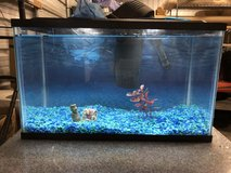 fish tank in Vacaville, California