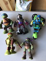 Teenage Mutant Ninja Turtles in Fort Leonard Wood, Missouri
