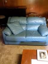 leather love seat and queen sofa bed in Naperville, Illinois