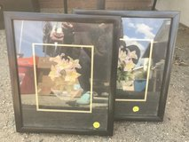 3 D Flowers Framed in Yucca Valley, California