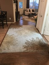 SAFAVIEH 6' x 9' Rug 100% Wool Pile in Pasadena, Texas