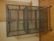 Ferret (small animal) cage in DeRidder, Louisiana