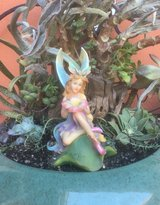 Fairy Garden in Vacaville, California