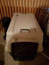 xxl dog kennel for sale in Stuttgart, GE