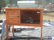 Precision Pet Rabbit Shack (NEW) (NEVER USED) in Travis AFB, California