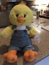 BUILD A BEAR CHICK in Houston, Texas