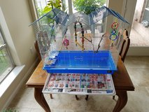 TWO PARAKEETS WITH LARGE CAGE, FOOD, AND ACCESSORIES in Conroe, Texas