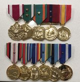 professionally Mounted Medals in Oceanside, California