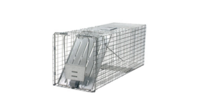 Havahart 1079 Large 1-Door Humane Animal Trap for Raccoons, Cats, Groundhogs, Opossums in Travis AFB, California