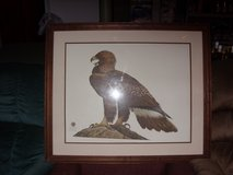 ray harm - eagle picture in Fort Knox, Kentucky