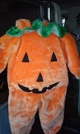 Jack-O-Lantern Costume in Westmont, Illinois