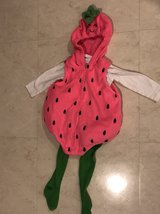 12 month strawberry costume in Okinawa, Japan
