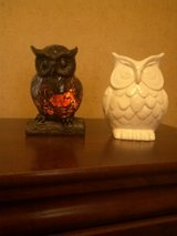 Owl Decor in Fort Leonard Wood, Missouri