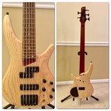 Electric Bass Guitar in Lockport, Illinois