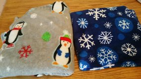Holiday Winter Blankets in Tinley Park, Illinois