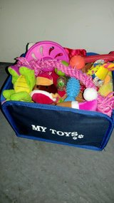 Dog toys in Orland Park, Illinois