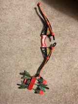 Z-Curve Bow in Plainfield, Illinois