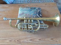 Bugle Horn in Yucca Valley, California