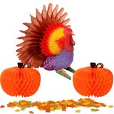 Tissue Turkey and Honeycomb Pumpkins in Fort Campbell, Kentucky