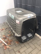 large airline approved dog crate in Ramstein, Germany