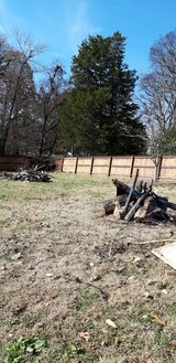 Free Firewood in Clarksville, Tennessee