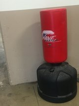 Wave Master Punching Bag in Schaumburg, Illinois