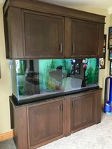 Fish Tank in Lockport, Illinois