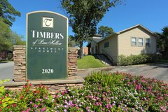 Timbers of Pine Hollow  One bed one bath apartments available NOW!!! in Conroe, Texas