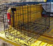 DOG Large Strong Metal KENNEL / CRATE in Alamogordo, New Mexico