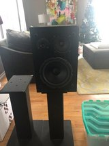 Bookshelf Speakers with Stands $40 in Westmont, Illinois