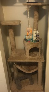 cat tower and accessories in DeRidder, Louisiana
