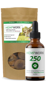 CBD for Pets in Clarksville, Tennessee