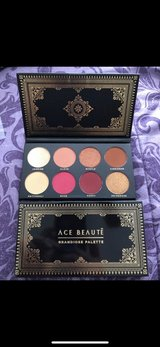 *NEW* Ace Beaute Palette in Spring, Texas