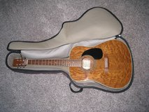 Hohner HW 420G - TOB Dreadnought Acoustic Guitar in Bolingbrook, Illinois