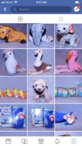 Beanie babies great condition in Naperville, Illinois