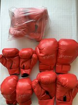 Martial Art Sparring/Boxing gloves in Okinawa, Japan