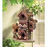Gingerbread-Style Birdhouse in Fort Lewis, Washington